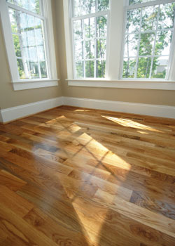 Flooring install and trim in Wood Cliff Lake NJ